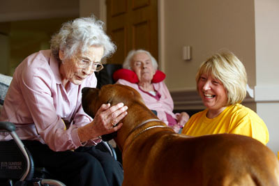 elderly care home resident with PAT dog at Royal Star & Garter by Janie Airey photographer